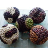 Seeds Ball