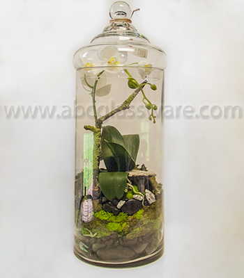 Glass Jars, Glass Containers