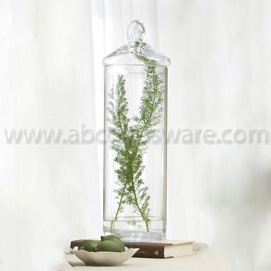 Glass jar 55x175 d0514 d8005 6 pieces abc glassware glass jar with lid is ideal as a centerpiece or merchandise display use to display soap candy etc and is food safe reviewsmspy