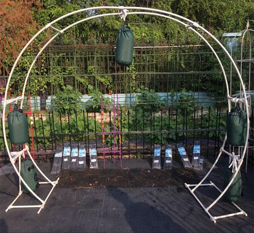 """Ornamental Metal Round Top Garden Planter Arch: 73"""" Round Wedding Arch Indoor Outdoor M65078"""